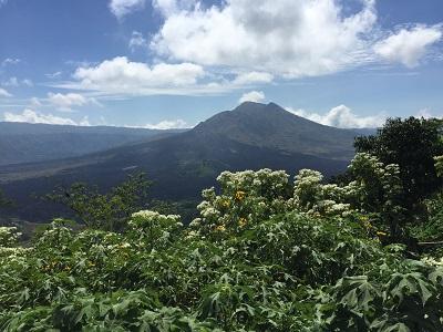 Mt. Batur2.jpg
