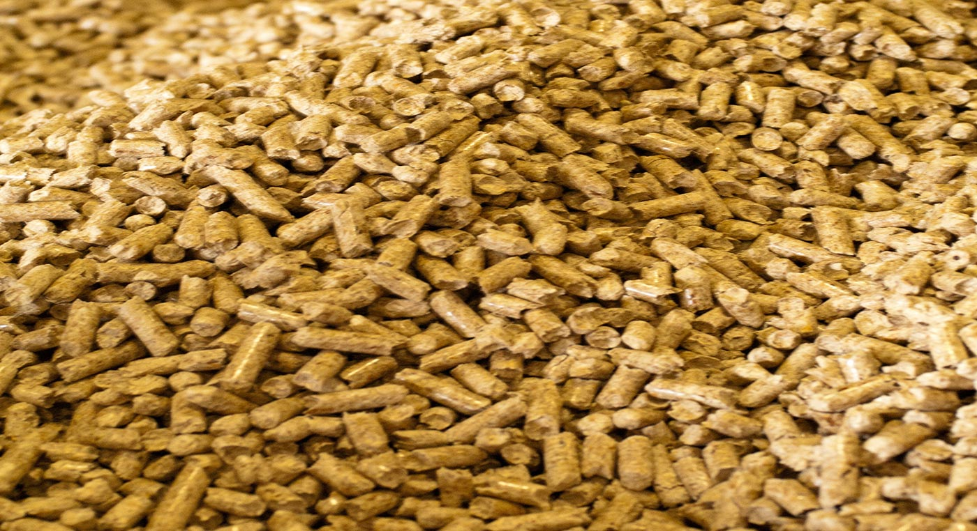 biomass | student energy