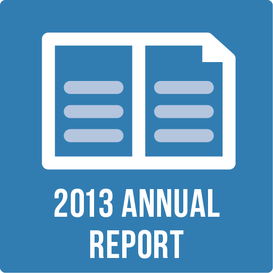 2013 Annual Report Icon.png