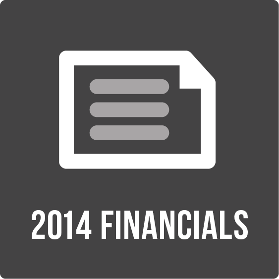 2015 Financials Icon.png